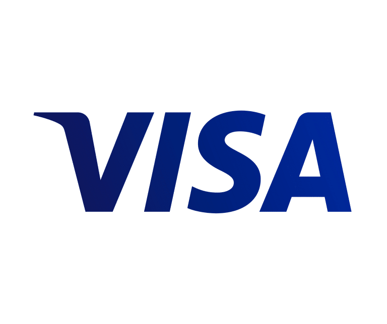Visa Innovation Program 2019​