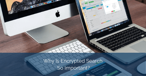 Why Is Encrypted Search So Important