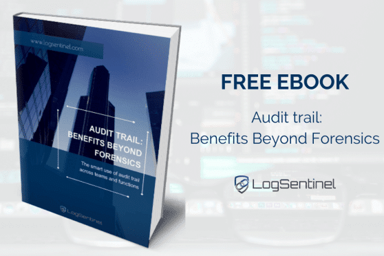 Free Ebook Audit Trail